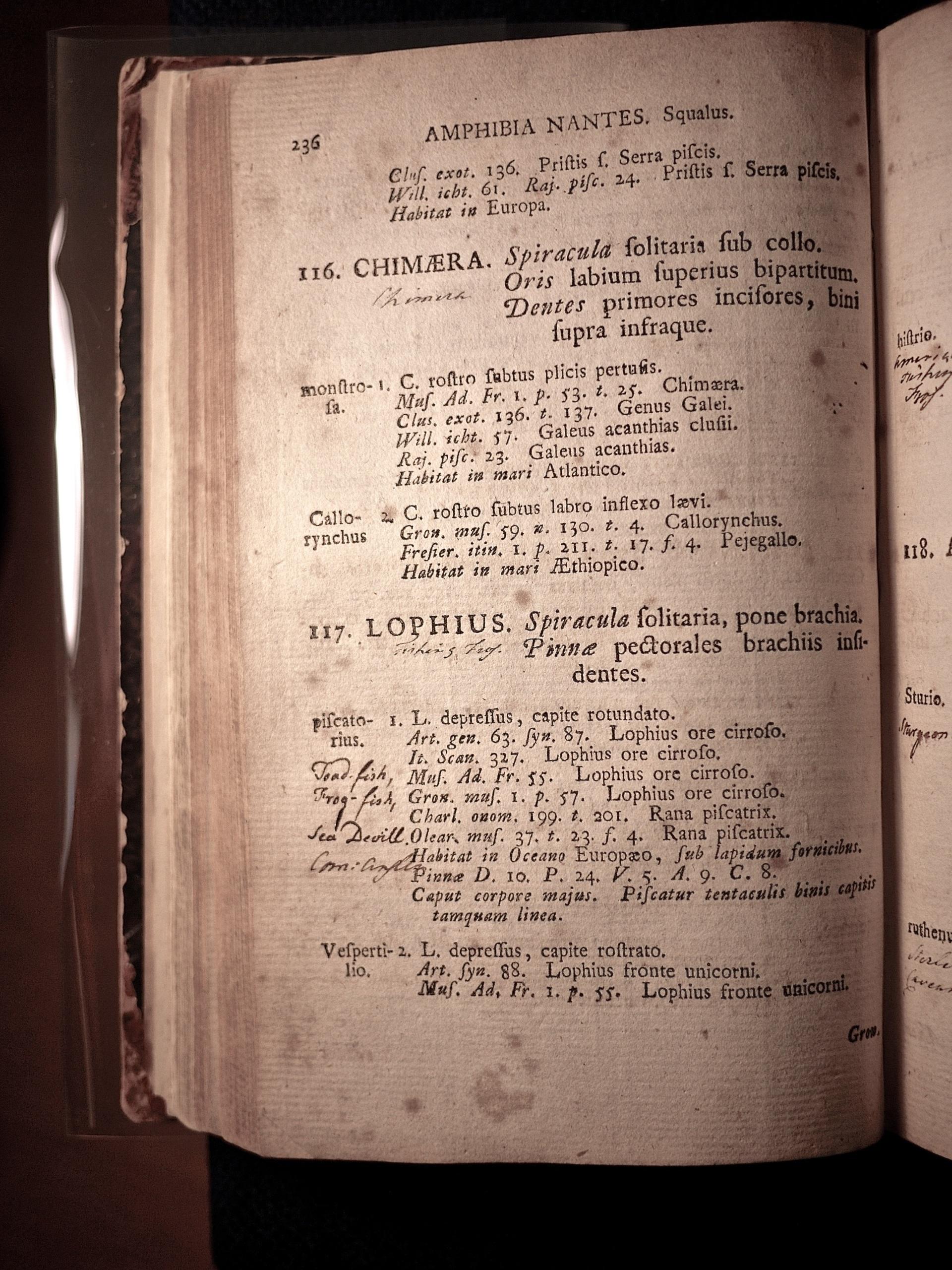 Linnaeus-Biblio